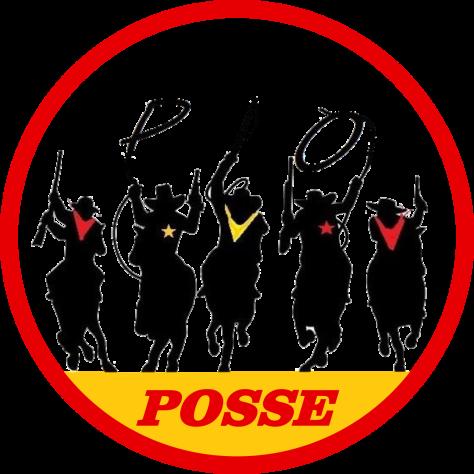 POSSE_FINAL (4)