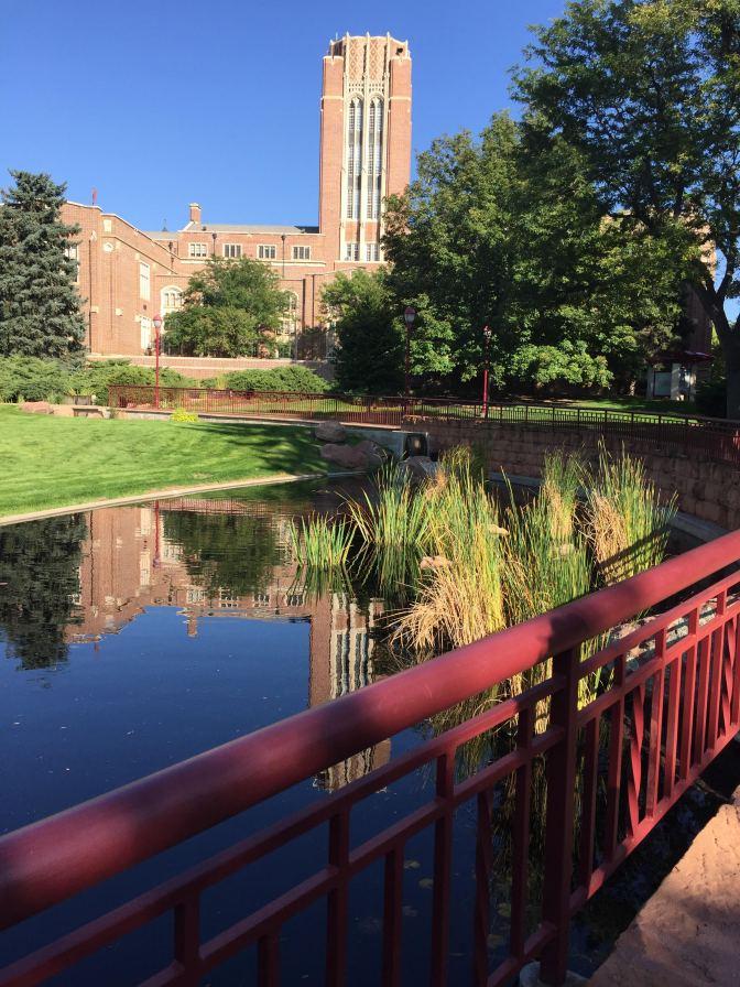 Humanities Garden Gets Another Facelift